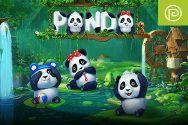 PANDA?v=1.8