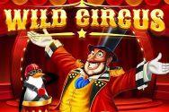 WILD CIRCUS?v=1.8