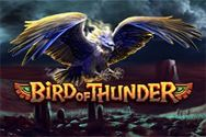 BIRD OF THUNDER?v=1.8