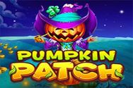 PUMPKIN PATCH?v=1.8