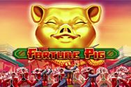 THE FORTUNE PIG?v=1.0