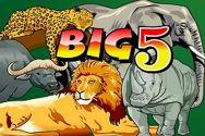 BIG 5?v=2.8.6