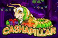 CASHAPILLAR IW?v=2.8.6