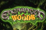 ENCHANTED WOODS?v=1.8