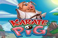 KARATE PIG?v=1.8