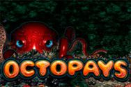 OCTOPAYS?v=2.8.6