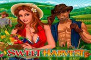 SWEET HARVEST?v=1.8