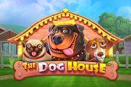THE DOG HOUSE?v=2.8.6