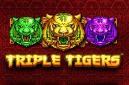 TRIPLE TIGERS?v=2.8.6