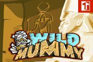 WILD MUMMY SLOTS?v=1.8
